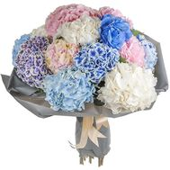 Chic bouquet of hydrangeas - flowers and bouquets on salonroz.com