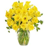 Sunny bouquet of daffodils - flowers and bouquets on salonroz.com