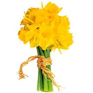 Spring bouquet of daffodils - flowers and bouquets on salonroz.com