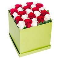 25 red and white roses in a square box - flowers and bouquets on salonroz.com