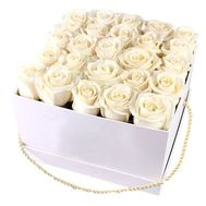 White roses in a square box - flowers and bouquets on salonroz.com