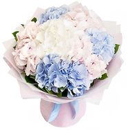 An elegant bouquet of hydrangeas - flowers and bouquets on salonroz.com