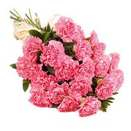 Bouquet of 21 red carnations - flowers and bouquets on salonroz.com