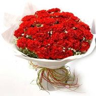 Bouquet of 65 red carnations with gypsophila - flowers and bouquets on salonroz.com