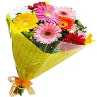 Bouquet of 11 gerberas - flowers and bouquets on salonroz.com