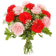 Bouquet of 15 different colored carnations - flowers and bouquets on salonroz.com