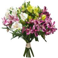 Bouquet of 13 multicolored alstromeries - flowers and bouquets on salonroz.com
