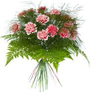 Bouquet of 17 carnations with verdure - flowers and bouquets on salonroz.com