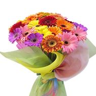 Bouquet of 37 multicolored gerberas - flowers and bouquets on salonroz.com