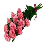 Bouquet of 13 red carnations - flowers and bouquets on salonroz.com