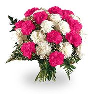Bouquet of 25 red and white carnations - flowers and bouquets on salonroz.com