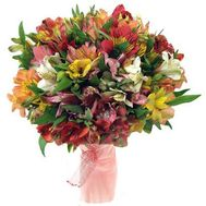 Bouquet of flowers from 45 multi-colored alstromeries - flowers and bouquets on salonroz.com