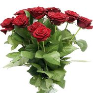 Bouquet of 15 red roses - flowers and bouquets on salonroz.com
