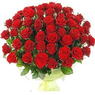Bouquet of 65 red roses - flowers and bouquets on salonroz.com