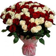 Bouquet of 75 red and white roses - flowers and bouquets on salonroz.com