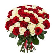 Bouquet of 43 red and white roses - flowers and bouquets on salonroz.com
