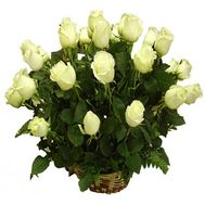 A basket of 21 white roses - flowers and bouquets on salonroz.com