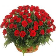 Basket of 75 red roses - flowers and bouquets on salonroz.com