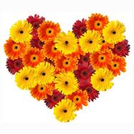 Heart of Gereber - flowers and bouquets on salonroz.com