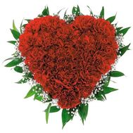 Heart of 25 red carnations with gypsophila - flowers and bouquets on salonroz.com