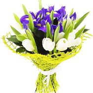 Букет из 6 ирисов и 15 тюльпанов - цветы и букеты на salonroz.com