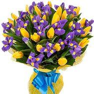Букет из 25 тюльпанов и 20 ирисов - цветы и букеты на salonroz.com