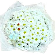 Bouquet of 23 white shrub chrysanthemums - flowers and bouquets on salonroz.com