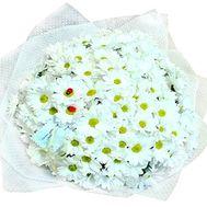 Букет из 23 белых кустовых хризантем - цветы и букеты на salonroz.com