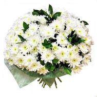 Bouquet of 17 white chrysanthemums - flowers and bouquets on salonroz.com