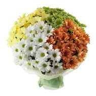 Bouquet of 33 different colored chrysanthemums - flowers and bouquets on salonroz.com