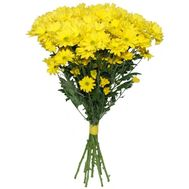 Bouquet of 11 yellow chrysanthemums - flowers and bouquets on salonroz.com