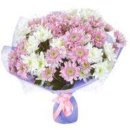 Букет из 17 белых и розовых кустовых хризантем - цветы и букеты на salonroz.com