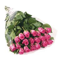 Bouquet of 19 pink roses - flowers and bouquets on salonroz.com