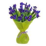 Букет из 21 ириса - цветы и букеты на salonroz.com