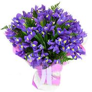 Букет из 51 ириса - цветы и букеты на salonroz.com