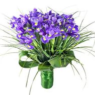 Букет из 37 ирисов - цветы и букеты на salonroz.com