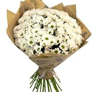 Bouquet of 25 chamomile chrysanthemums - flowers and bouquets on salonroz.com
