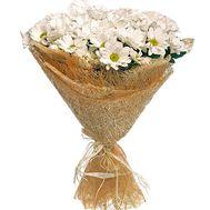Букет из 7 ромашковых хризантем - цветы и букеты на salonroz.com