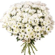 Bouquet of 21 chamomile chrysanthemums - flowers and bouquets on salonroz.com
