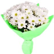 Bouquet of 9 chamomile chrysanthemums - flowers and bouquets on salonroz.com