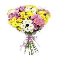Bouquet of 11 chrysanthemums - flowers and bouquets on salonroz.com