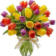 Букет из 25 тюльпанов - цветы и букеты на salonroz.com