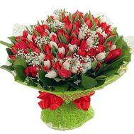 Букет із 101 тюльпана - цветы и букеты на salonroz.com