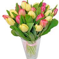 Букет із 19 тюльпанів - цветы и букеты на salonroz.com