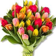 Букет із 31 тюльпана - цветы и букеты на salonroz.com