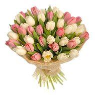 Букет из 31 белых и розовых тюльпанов - цветы и букеты на salonroz.com