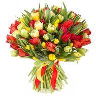 Букет із 101 різнокольорових тюльпанів - цветы и букеты на salonroz.com