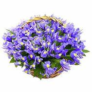 Корзина цветов из 101 ириса - цветы и букеты на salonroz.com