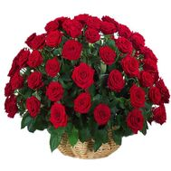 Basket of 55 red roses - flowers and bouquets on salonroz.com