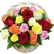Basket of 25 roses - flowers and bouquets on salonroz.com